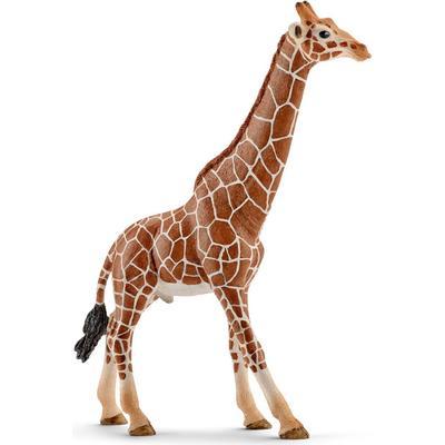 Schleich Giraffe Male 14749