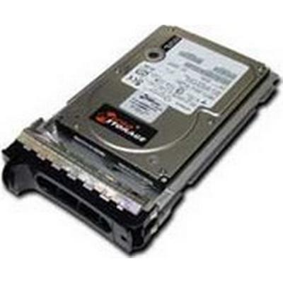MicroStorage SA300003I818 300GB
