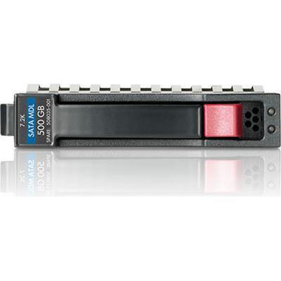HP 751969-B21 1TB