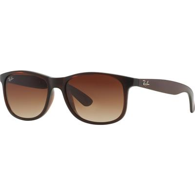 Ray-Ban Andy RB4202 607313