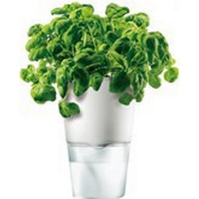 Eva Solo Herb Pot Ø 11cm