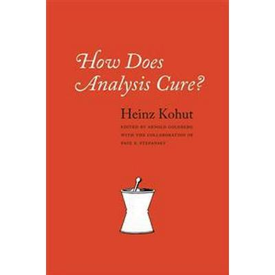 How Does Analysis Cure? (Pocket, 2013)
