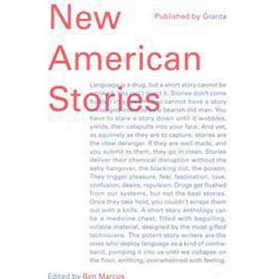New American Stories (Häftad, 2015)
