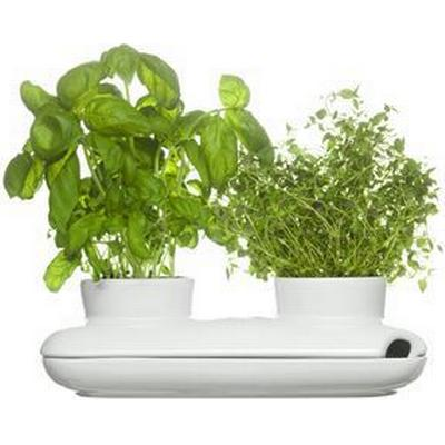 Sagaform Herb Pot Duo 8cm