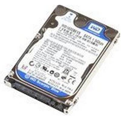MicroStorage IB750002I131S 750GB