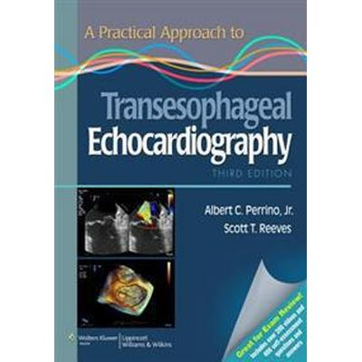 A Practical Approach to Transesophageal Echocardiography (Häftad, 2013)