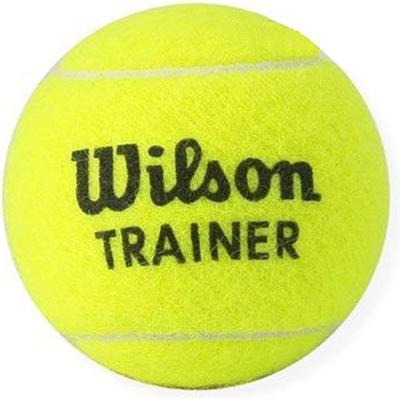 Wilson Trainer Tbal 96 pcs