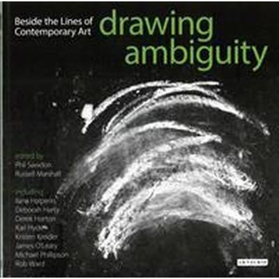 Drawing Ambiguity (Pocket, 2015)