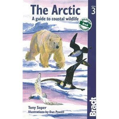 The Arctic (Pocket, 2012)