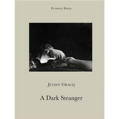 A Dark Stranger (Pocket, 2013)