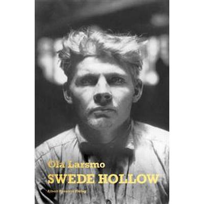 Swede Hollow (E-bok, 2016)