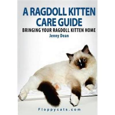 A Ragdoll Kitten Care Guide: Bringing Your Ragdoll Kitten Home (Häftad, 2010)