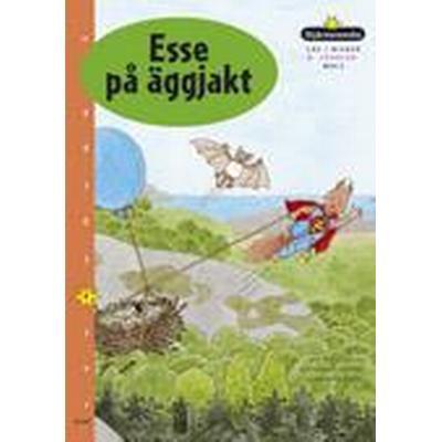 Stjärnsvenska Box 2 Upplevelse Nivå 4 (Övrigt format, 2004)