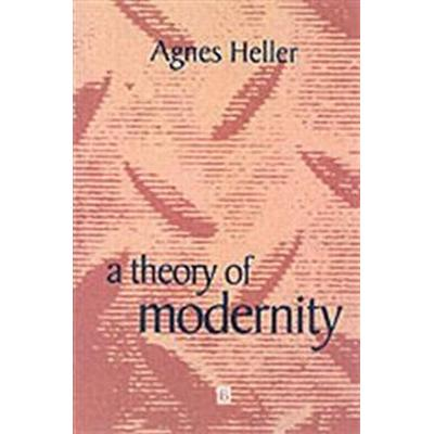 A Theory of Modernity: Issues and Public Policy (Häftad, 1999)