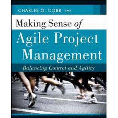 Making Sense of Agile Project Management: Balancing Control and Agility (Häftad, 2011)