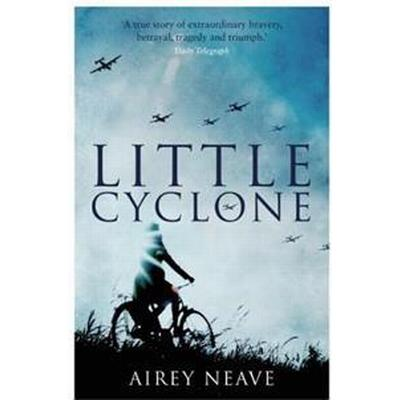 Little Cyclone (Pocket, 2016)