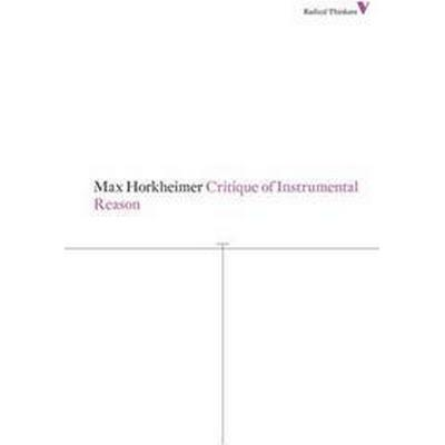 Critique of Instrumental Reason (Pocket, 2013)