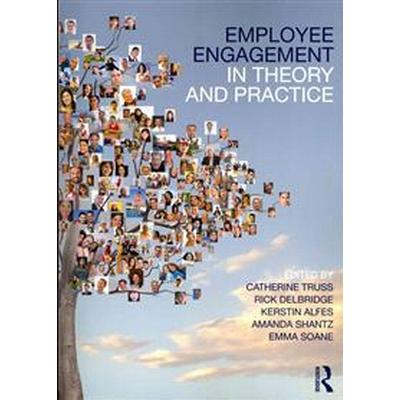 Employee Engagement in Theory and Practice (Pocket, 2013)