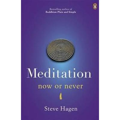 Meditation Now or Never (Häftad, 2012)