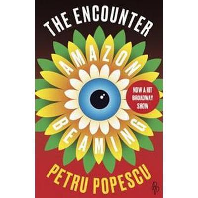 The Encounter (Pocket, 2017)