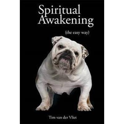 Spiritual Awakening (Pocket, 2013)