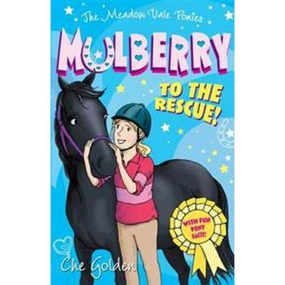 The Meadow Vale Ponies: Mulberry to the Rescue! (Häftad, 2014)