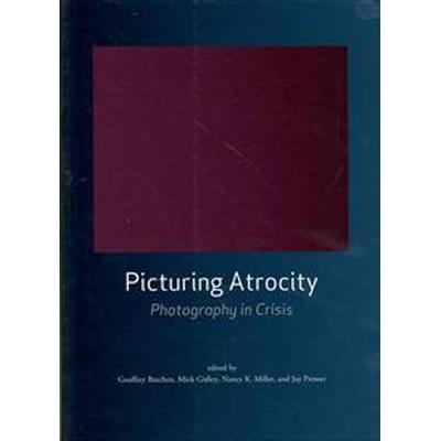 Picturing Atrocity (Pocket, 2012)