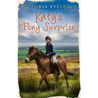 Katy's Pony Surprise (Pocket, 2012)