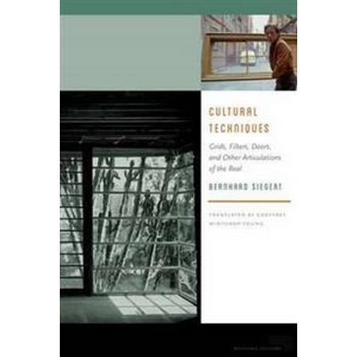 Cultural Techniques (Pocket, 2015)