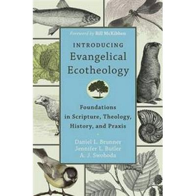 Introducing Evangelical Ecotheology (Pocket, 2014)