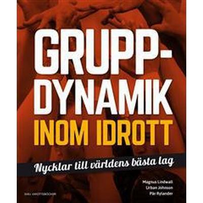 Gruppdynamik inom idrott (Danskt band, 2016)