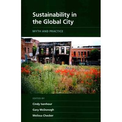 Sustainability in the Global City (Pocket, 2015)
