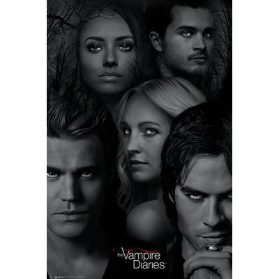 EuroPosters The Vampire Diaries 61x91.5cm Affisch