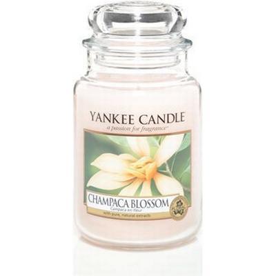 Yankee Candle Champaca Blossom 623g Doftljus