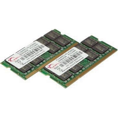 G.Skill Standard DDR2 800MHz 2x2GB (F2-6400CL5D-4GBSQ)