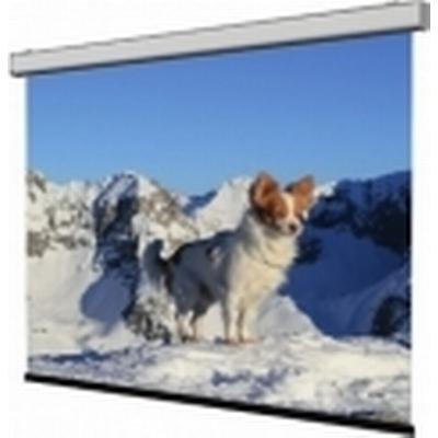 WS Spalluto WS-S-NewSlim Coral (Back Projection)