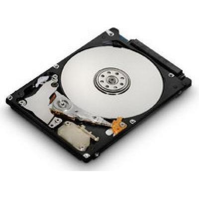 MicroStorage AHDD027 160GB