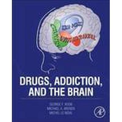 Drugs, Addiction, and the Brain (Inbunden, 2014)