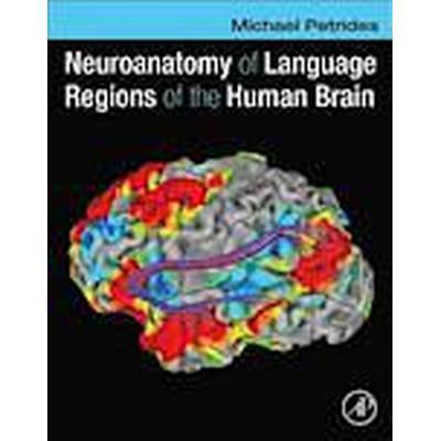Neuroanatomy of Language Regions of the Human Brain (Inbunden, 2013)
