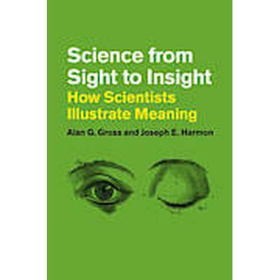 Science from Sight to Insight (Häftad, 2013)