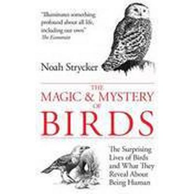 The Magic and Mystery of Birds (Inbunden, 2014)