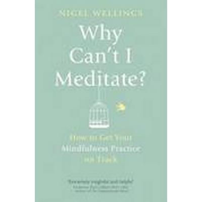 Why Can't I Meditate? (Häftad, 2015)