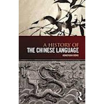 A History of the Chinese Language (Häftad, 2014)
