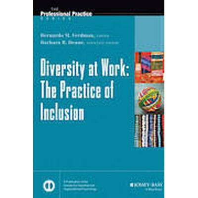 Diversity at Work (Inbunden, 2013)