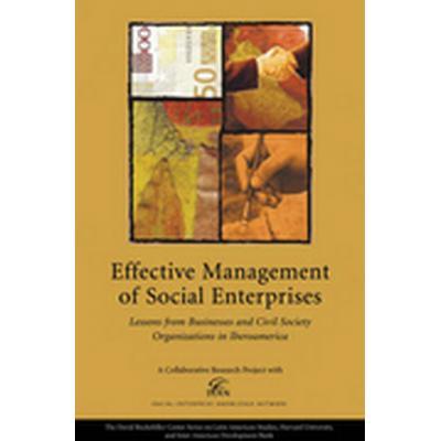 Seeking Success in Social Enterprise (Häftad, 2006)