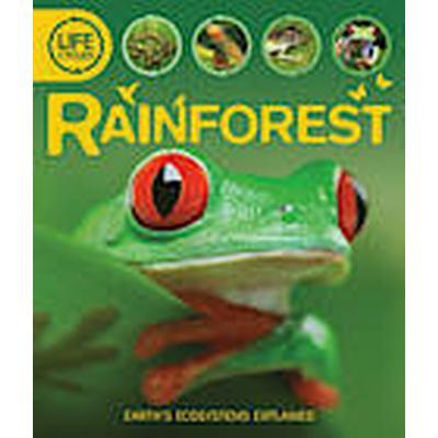 Life Cycles: Rainforest (Häftad, 2012)