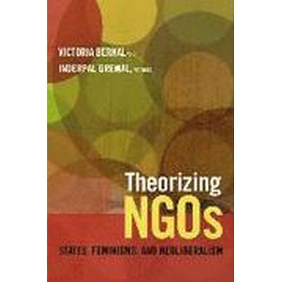 Theorizing NGOs (Häftad, 2014)