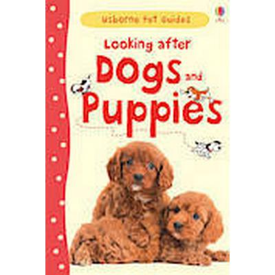 Looking After Dogs and Puppies (Inbunden, 2013)