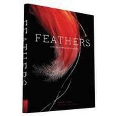 Feathers (Inbunden, 2016)