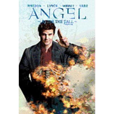 Angel: Volume 4 After the Fall (Häftad, 2011)